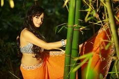 South actress Madhu Chanda Photos Set-1-Hot In Saree (10)