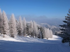 Tagasi talves (anuwintschalek) Tags: schnee winter white snow landscape austria frost hoarfrost january skiresort lumi weiss niederösterreich raureif lärche reif winterlandscape talv skislope winterlandschaft hochnebel unterberg valge 2013 härmatis schigebiet schipiste epl1 lehis talvemaastik olympusepl1 suusanõlv suusakoht lehised