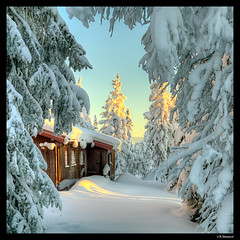 Arriving at the cabin (vegarste) Tags: trees winter light snow cold norway square norge frozen vinter cabin nikon europe december norwegen hidden frame rim scandinavia lys hdr rhyme sn d800 hytte trr hedmark kaldt photomatix ringsaker tonemapping 5xp 5exp gjemt hamarsterhgda