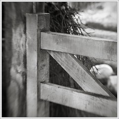 Lensbaby Thursdays (98):Gate (spodzone) Tags: light people blackandwhite sunlight blur art nature lines weather composite lensbaby composition manipulated square lens photography scotland gate warm dof emotion affection bokeh space angles places diagonal equipment filter environment toned platinum contrasts tranquil stacked lightanddark existentialist dumfriesandgalloway goldenratio timescale digikam newtonstewart shapeandform rawconversion characterful enfuse patternsoflight darktable photivo abstractqualities mankindnature separationdivision digitallowpass