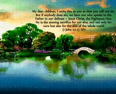 1 John 2:1-2 nlt (Bob Smerecki) Tags: life love church true rock stone john easter born 1 high truth heaven king christ god spirit brother father ghost religion jesus lord christian mount holy moses again olives lamb bible judge alive commandments messiah risen salvation abba sanctuary prayers tabernacle nations sabbath blessed redeemer almighty sins scriptures passover 212 nlt faithful everlasting slain forgive baptised crucified preist apostle forgiven deciples reserection strongtower