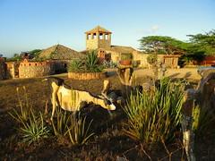 Casa de los vientos (barloventomagico) Tags: southamerica venezuela posada marcaribe caribbeansea suramrica paraguan neotropic estadofalcn northernsouthamerica neotrpico nortedesuramrica casadelosvientos