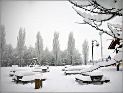 neve al parco (un certain regard1) Tags: parco neve solaro
