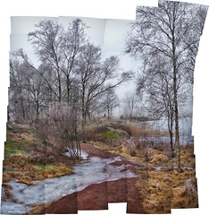 Photomerge preview of 60 images for bokehrama experiment (Brenizer method) (cablefreak) Tags: