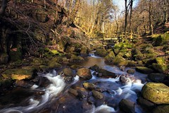 Padley Gorge ~ explored (John Underwood) Tags: bridge canon landscape moss derbyshire peakdistrict wideangle explore gorge padley grindleford padleygorge explored johnunderwood canoneos650d