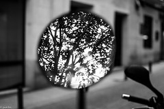 circled (pukilin) Tags: madrid street city light bw reflection tree luz bike 35mm circle mirror calle ciudad espejo reflejo rbol moto cculo nikond3100