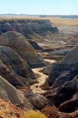 The Blue Badlands (Esa tipa, La Contessa) Tags: park blue vacation arizona nature yellow forest canon landscape eos rebel desert gray roadtrip badlands t3 mesa petrifiedforestnationalpark petrified