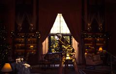 0284 (mixed alternative) Tags: christmas winter house gardens canon lens gold lights shiny bokeh antique interior indoor telescope nostalgic pancake 40mm brass longwood christmastime 0284 40f28 5dmk3 5dmarkiii mixedalternative mzheng
