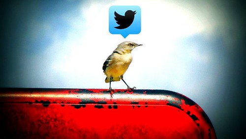Twitter by Uncalno, on Flickr