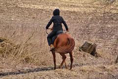 ....out of control (osto) Tags: horse animal denmark europa europe sony zealand dslr scandinavia danmark a300 sjlland  osto alpha300 osto march2013
