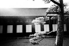 le petit paysage (我的小風景) Tags: leica bw rollei kyoto 京都 m3 三十三間堂 小旅行 superpan200