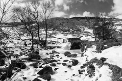 Sweden Bridge, Ambleside, UK (Benjamin Edwards) Tags: uk bridge trees england blackandwhite horse snow cold ice water river landscape landscapes frozen unitedkingdom sweden lakedistrict pack nikond300 benjaminedwards silverefexpro march2013 southlakelanddistrict