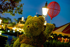 Epcot: Winnie The Pooh (Hamilton!) Tags: world vacation lake flower statue festival night zeiss garden prime bay epcot topiary long exposure florida bokeh sony tripod hamilton lagoon disney resort event telephoto pooh carl vista winnie walt za showcase hdr gitzo slt 135mm buena a99 sonnart18135 pytluk