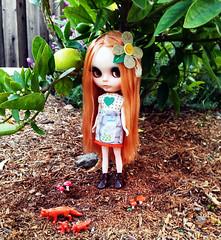 Brennan in the yard