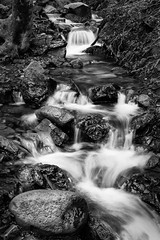 Uvas Creek (StefanB) Tags: california longexposure bw water monochrome creek outdoor hiking geotag uvascanyon 1445mm em5 uvascreek flvonmirikr