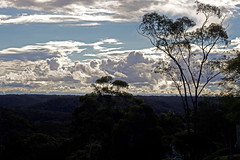 a cloudy evening over the bush (loobyloo55) Tags: blue trees white green clouds bush bluemountains newsouthwales