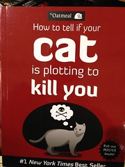 Furtive Finagling Felines! - Las Vegas, NV (tossmeanote) Tags: new york las vegas red silly cat poster fun 1 book funny kill you nevada best oatmeal nv novelty cover inside times seller plotting iphone cunning pullout cunningness tossmeanote