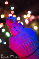 Snow on the cake (ErnestoMad) Tags: christmas food color lights bokeh cupcake product 600d canonefs1855mm3556 canont3i