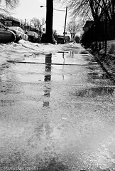 Spring? (Marcus Metropolis) Tags: leica white black film analog photography minneapolis uptown mn m6 40mmnoktonf14 xp2ilford400