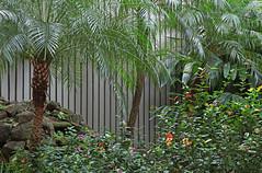 Edifício Jardins I