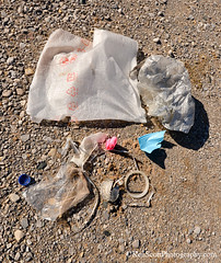 Earth Week ... beach trash (Ken Scott) Tags: usa spring michigan lakemichigan greatlakes april freshwater voted leelanau pyramidpoint trashpickup 45thparallel 2013 sbdnl sleepingbeardunenationallakeshore mostbeautifulplaceinamerica