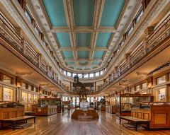 Muse Redpath (monilague) Tags: museum architecture montreal muse histoire naturelle architecutre redpath
