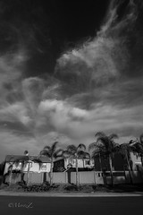 Sky and clouds through the Konica UC fisheye (zz ma) Tags: konica ar uc 15mmf28 fisheye sony a6000 mirrorless fisheyelens manual mf california sandiego outdoor sky clouds beforesunset evening blackandwhite bw infrared manualfocus konicauc hexagon15mmf28 konicahexagon hexagon hexagonfisheye konica15mmf28