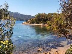 La spiaggia della #guardiola a #procchio, foto di @claudia_signorini1963. Continuate a taggare le vostre foto con #isoladelbaapp il tag delle vostre vacanze all'#isoladelba. http://ift.tt/1NHxzN3  (isoladelbaapp) Tags: isoladelba elba visitelba portoferraio porto azzurro capoliveri marciana marina di campo rio