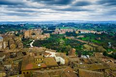 Landscape in oil, Siena (Arutemu) Tags: europe eu european italy italia italien italian toscana tuscany tuscan siena torredelmangia city cityscape ciudad view ville scene scenic landscape