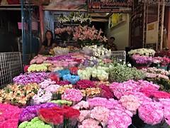dangwa (DOLCEVITALUX) Tags: dangwa flower flowers flowerstalls busterminal manila philippines canonpowershotsx50hs