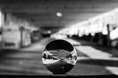 _MG_0288 (AdamFejes) Tags: glass globe glassglobe pointofview light sun summer blackandwhite bw colour city budapest danube sunset
