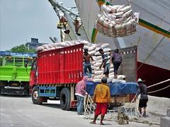 Sunda Kelapa (SqueakyMarmot) Tags: travel asia indonesia java jakarta 2016 sundakelapa oldharbour port pinisi boats workers labourers loading