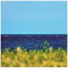 brezza (G e e n o) Tags: vento primavera wind spring colori mare sea sole sun cielo sky progetto project blue nikon d90 tamron 70300mm