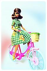 A-Z Challenge: P - Plaid (imida73) Tags: barbie silkstone city suit chic squishtish