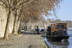 The dock (Ivanov Andrey) Tags: thedock ship boat river tree branch leaves autumn yellow bridge arch lantern stonewall sidewalk car history walking sky cloud blue water reflection fence parapet wave city street square quarter walk journey landscape paris senna france