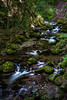 stirling-1 (David Fitzell Photography) Tags: stirling scotland glen river stream mountain nature long exposure sony a7ii 35mm trees tree water flow flowing tourist travelling