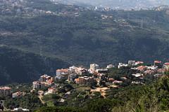 Monteverde (rabiem22) Tags: trees roof lebanon valley monteverde mountlebanon redrooftile me2youphotographylevel1