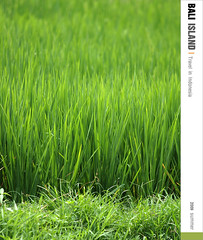 D3_GREEN (Ache_Hsieh) Tags: travel summer bali digital indonesia island olympus e3 swd 巴里島 zd 蜜月 印尼 1454mm2835 50200mm2835