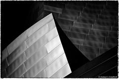 "Form Isn't Following Function (James A. Crawford - ♪♫♪""Crawf""♪♫♪) Tags: california wallpaper sky blackandwhite bw usa white art texture photoshop canon reflections eos blackwhite losangeles creative gehry calif textures cal ripples frankgehry canoneos unforgettable waltdisneyconcerthall blackdiamond digitalphotography waltdisney edges losangelescounty blueribbonwinner vividimagination creativephotography justimagine cs5 efex niksoftware creativedigitalphotography flickraward viveza theunforgettablepictures creativepostprocessing expessionism gününeniyisithebestofday silverefexpro qualitysurroundings viveza2 silverefexpro2 extraordinarilyimpressive imageborders magicmomentsinyourlifelevel1 ☯laquintaessenza☯ vigilantphotographersunite vpu2"