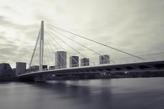 Pont Eric Tabarly (sernine) Tags: bridge pont nantes tabarly