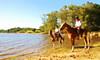 Meia tarde no açude... (Eduardo Amorim) Tags: brazil horses horse southamerica field água brasil criollo caballo cheval atardecer caballos agua dam barragem campo cavalos pelotas damm pferde cavalli cavallo cavalo gauchos pferd riograndedosul barrage pampa poniente champ anoitecer aguada campanha brésil chevaux gaucho entardecer crepúsculo 馬 américadosul açude poente diga gaúcho amériquedusud лошадь gaúchos 马 sudamérica suramérica américadelsur südamerika crioulo caballoscriollos criollos حصان costadoce americadelsud crioulos cavalocrioulo americameridionale holidaysvacanzeurlaub caballocriollo auffangen eduardoamorim cavaloscrioulos travelsofhomerodyssey iayayam yamaiay