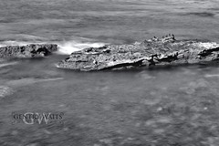 Untitled (2013-02-16 21:57:50) (Gentry Waits Photography) Tags: ocean california longexposure sea seascape art beach water landscape blackwhite sandiego tripod lajolla professional filter carbonfiber manfrotto canon70200mmf28l canonshooters bwnd 70200f28lisii canon1dx hydrostaticballhead ppamember