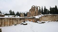 Anjar (10) (evan.chakroff) Tags: city lebanon urbanism umayyad 700s 8thcentury anjar evanchakroff chakroff umayyadcity