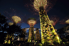 Gardens by the Bay | Marina South, Singapore (Ping Timeout) Tags: park new city light music plant tree green public vertical gardens by night marina garden giant evening bay singapore cityscape view shot grove outdoor south scene casino dining sands spark strategy attraction skyway rhapsody ocbc supertree 滨海湾花园
