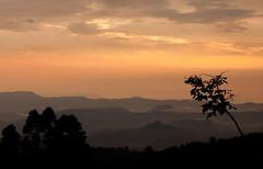 Sunset (Kid.UnLtd) Tags: sunset mountains nature clouds colours munnar