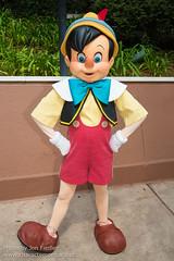 Pinocchio (Random)