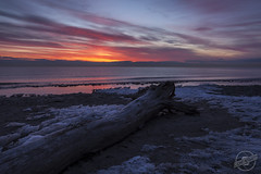 Radiant Rise (CJ Schmit) Tags: blue red sun snow cold tree ice water yellow wisconsin sunrise canon log sand lakemichigan grantpark shutterdrag southmilwaukee canonef1740mmf40lusm springclouds 5dmarkii grantparkbeach canon5dmarkii cjschmit wwwcjschmitcom cjschmitphotography