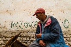 Ay Love you!!! (Alessandro Vecchi) Tags: africa donkey morocco fez marocco maghreb medina write viaggio fes scritta asino nordafrica