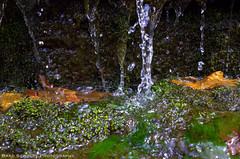 Moss Waterfall (B.G.Schultz-Photography) Tags: moss nikon hinkleyreservation d7000