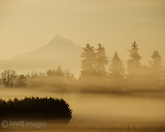 Foggy Layer View After Sunrise (mwbergeron01) Tags: mountain fog sunrise mounthood